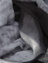 Палантин Francesca Bassi D17E-F76 100% модал Серый Индия изображение 1